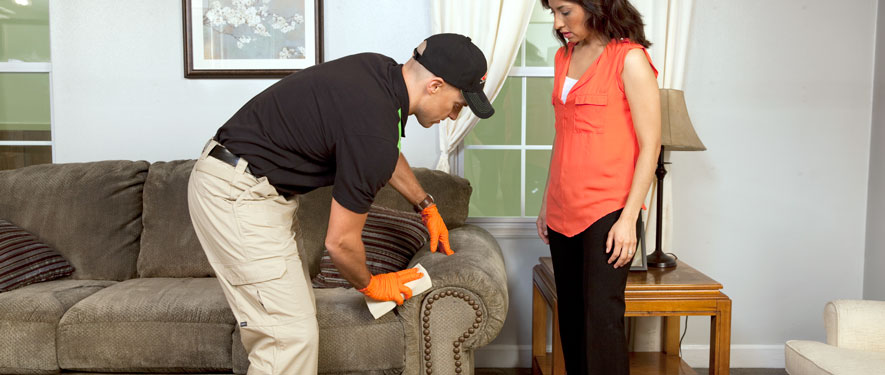 Morrow, GA carpet upholstery cleaning